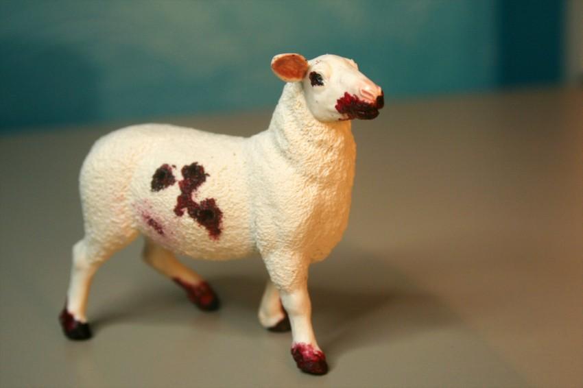 Zombie Sheep